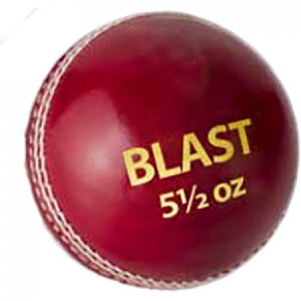 DSC Blast Cricket Leather Ball