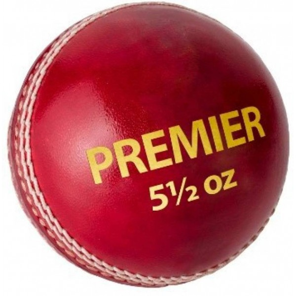 DSC Premier Cricket Leather Ball