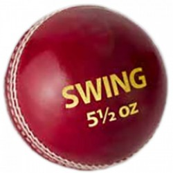 DSC Swing Cricket Leather Ball